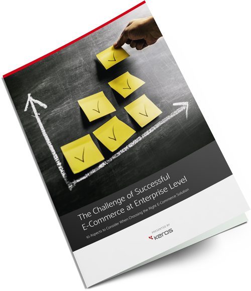 Free White Paper: The Challenge of Successful E-Commerce at Enterprise Level